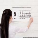 calendário personalizado de parede Parque Maria Domitila